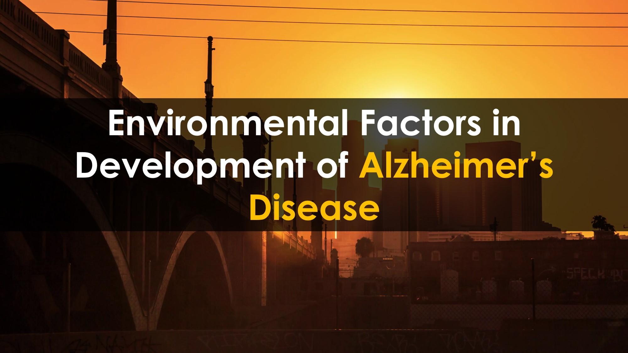 AlzheimerDisease